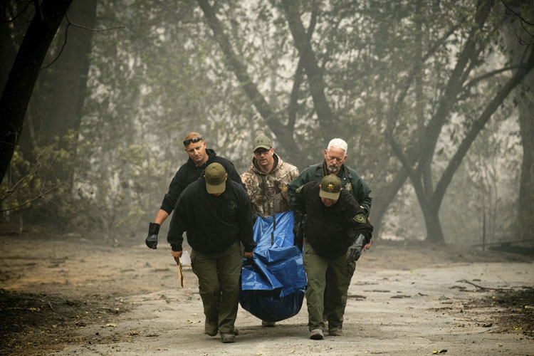 Photo of A 50 ascienden muertos por incendio forestal en California