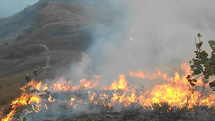 Photo of Siete menores de edad murieron por incendio forestal en Aragua