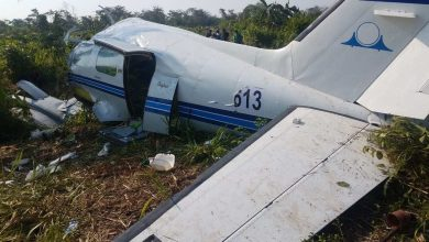 Photo of Accidente de avión dejó dos muertos en parque nacional de Tanzania