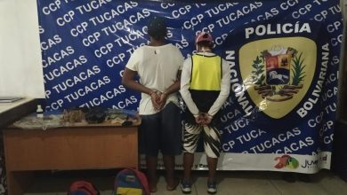 Photo of TUCACAS |Detenidos por extracción ilegal de pulpos y langosta